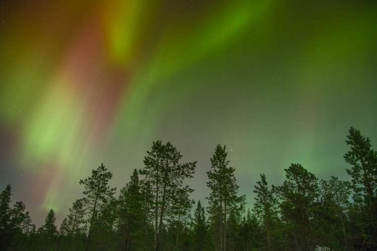 NOrthern Lights - AYP